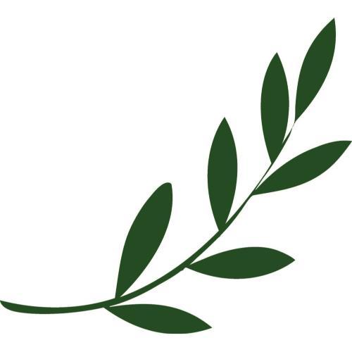 7 Symbols Of Peace